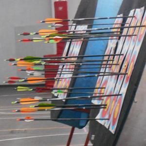 Torneo de tiro con arco 2014