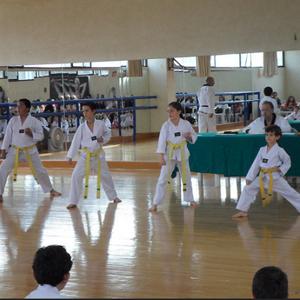 Examen de Tae kwon do 2014