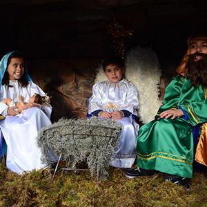 Cabalgata de Reyes 2015 Parque II