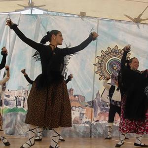 Romería del Pilar 2012