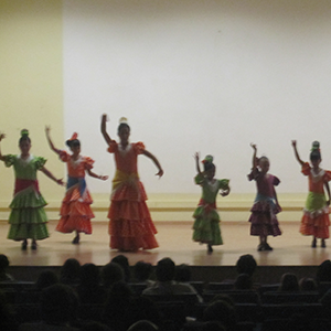 Festival de flamenco (enero) 2012